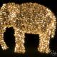 Elefant aus Licht